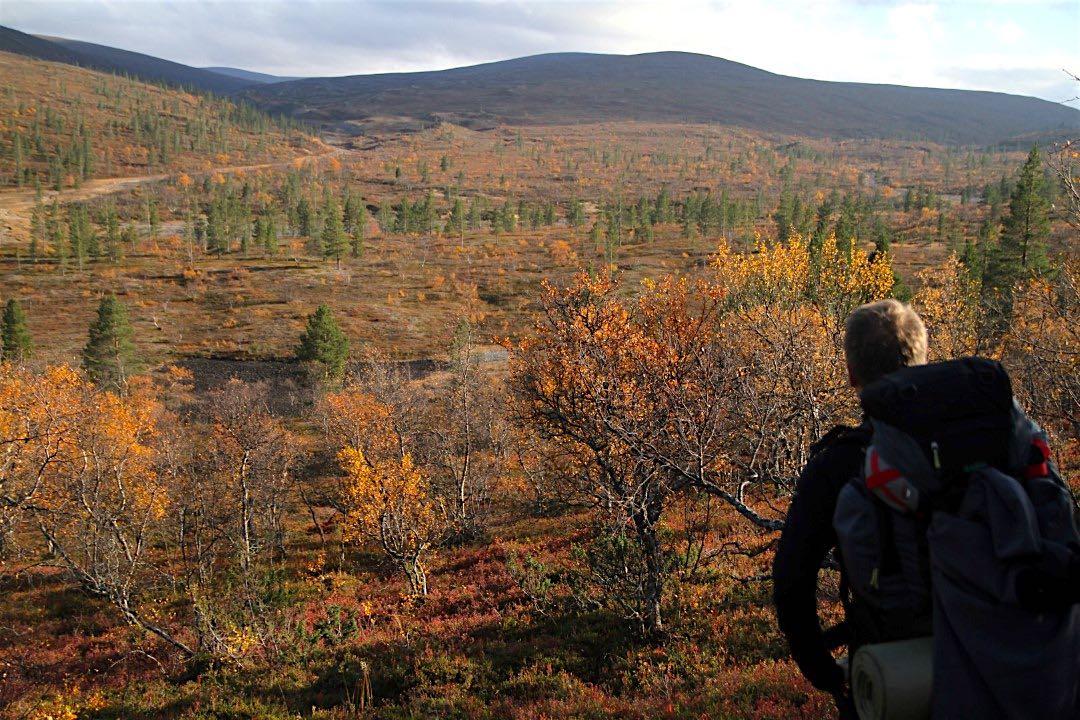 Tunturimaisema UKK-kansallispuistossa